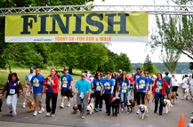 Furry 5K 2013 Finish Line! Success for Our Seattle Veterinary Team!